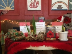 a table filled with spring bulbs and flowers on sale at the Alternative Christmas Fair