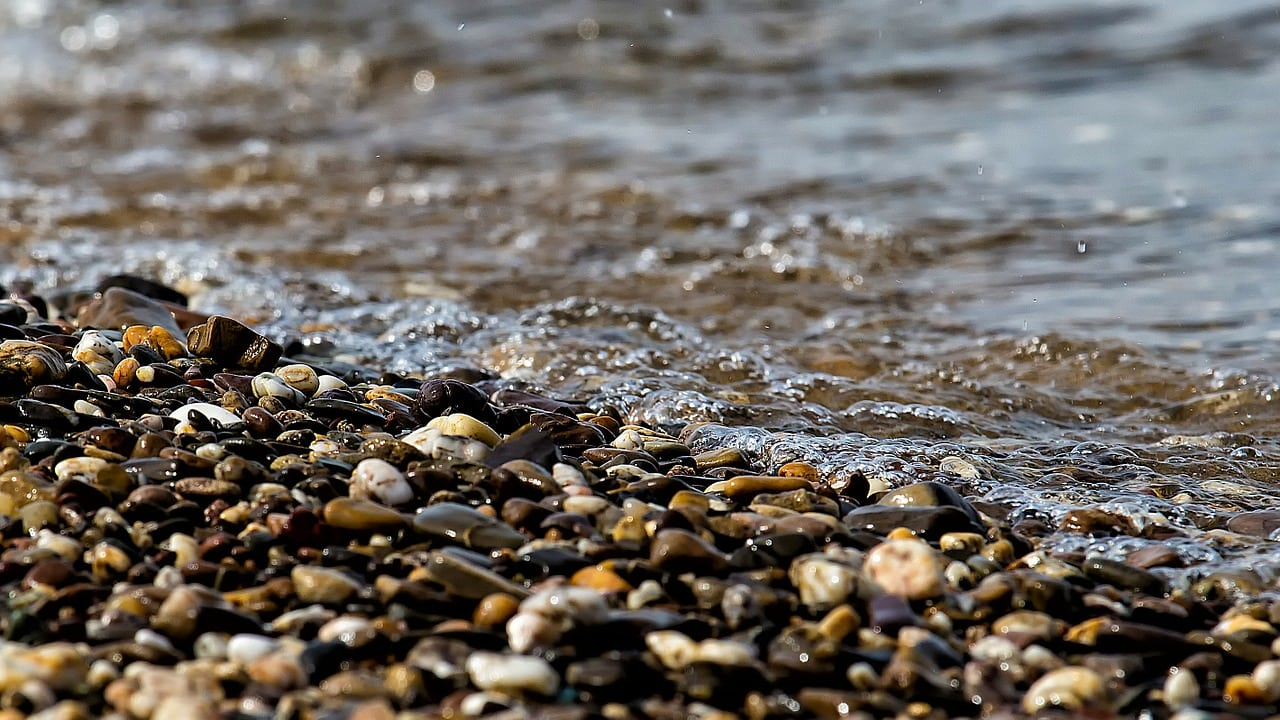 river bank with stones